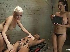 Hot electro - sluts play with their sexual slave